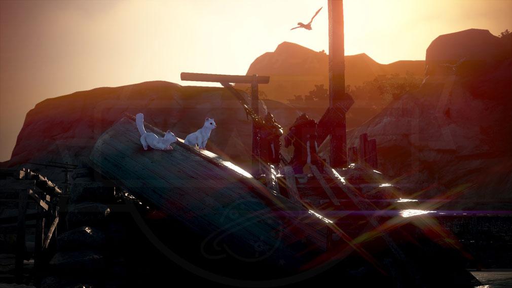 黒い砂漠 新ペット『フェレット』スクリーンショット