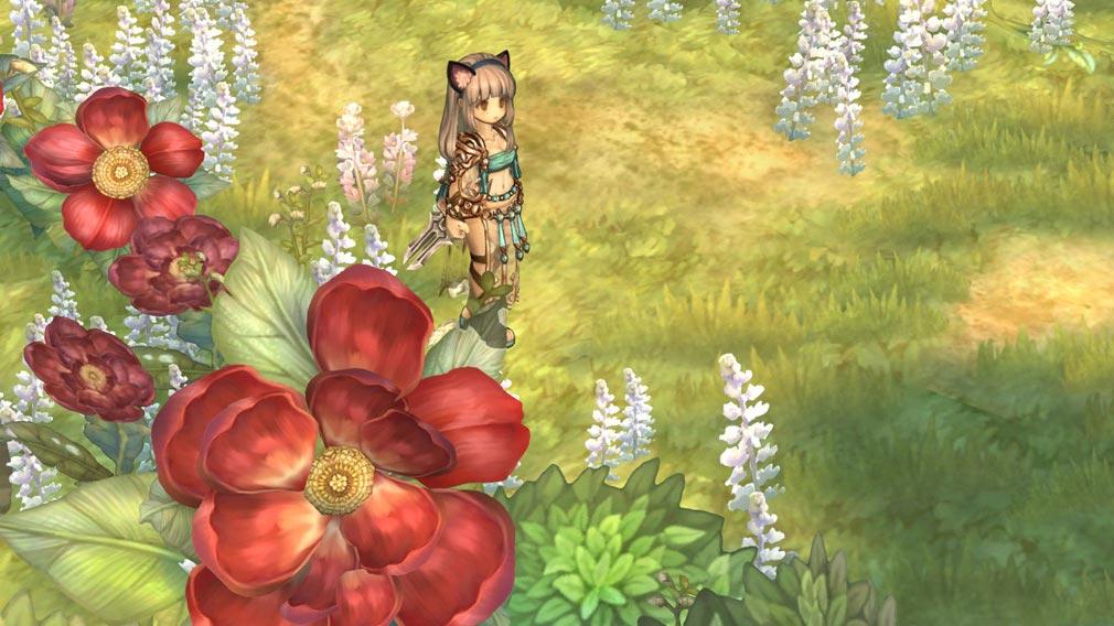 Tree of Savior (ツリーオブセイバー) ToS 原画イラストを実装したゲーム内スクリーンショット