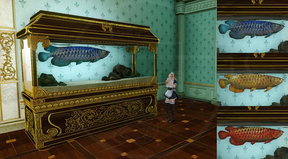 アーキエイジ(ArcheAge) 『大型水槽』に入れて飼う『奇妙なアロワナ』、『観賞用アロワナ 赤龍 、金龍、清龍』スクリーンショット