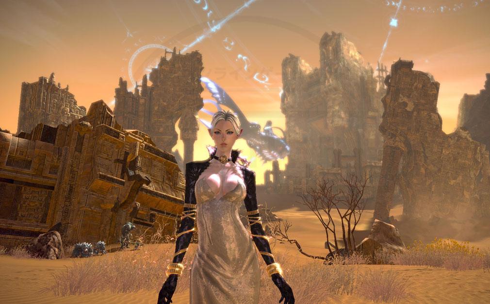 TERA(テラ The Exiled Realm of Arborea) ハイエルフスクリーンショット