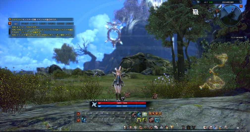 TERA(テラ The Exiled Realm of Arborea) ゲーム内UIの大幅リニューアルBeforeスクリーンショット
