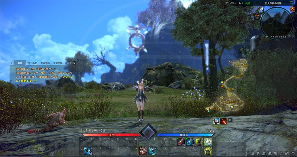 TERA(テラ The Exiled Realm of Arborea) ゲーム内UIの大幅リニューアルAfterスクリーンショット