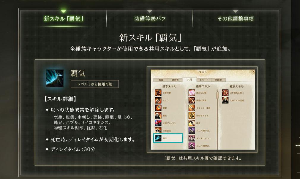 アーキエイジ(ArcheAge) キャラクター関連の調整新スキル『覇気』紹介イメージ