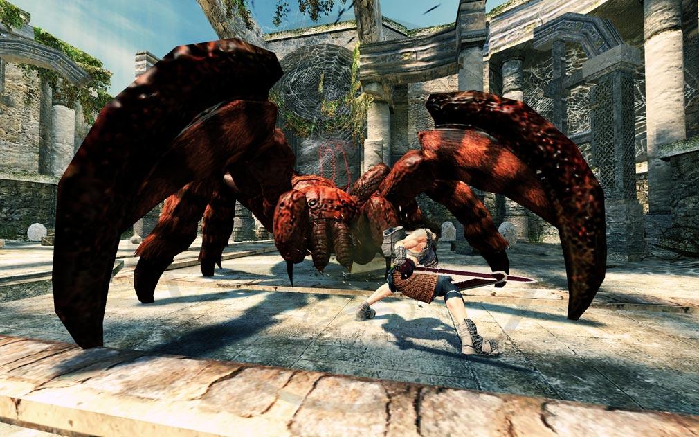 ビノギ英雄伝 巨大ボス蜘蛛とフィオナのアクションバトルスクリーンショット