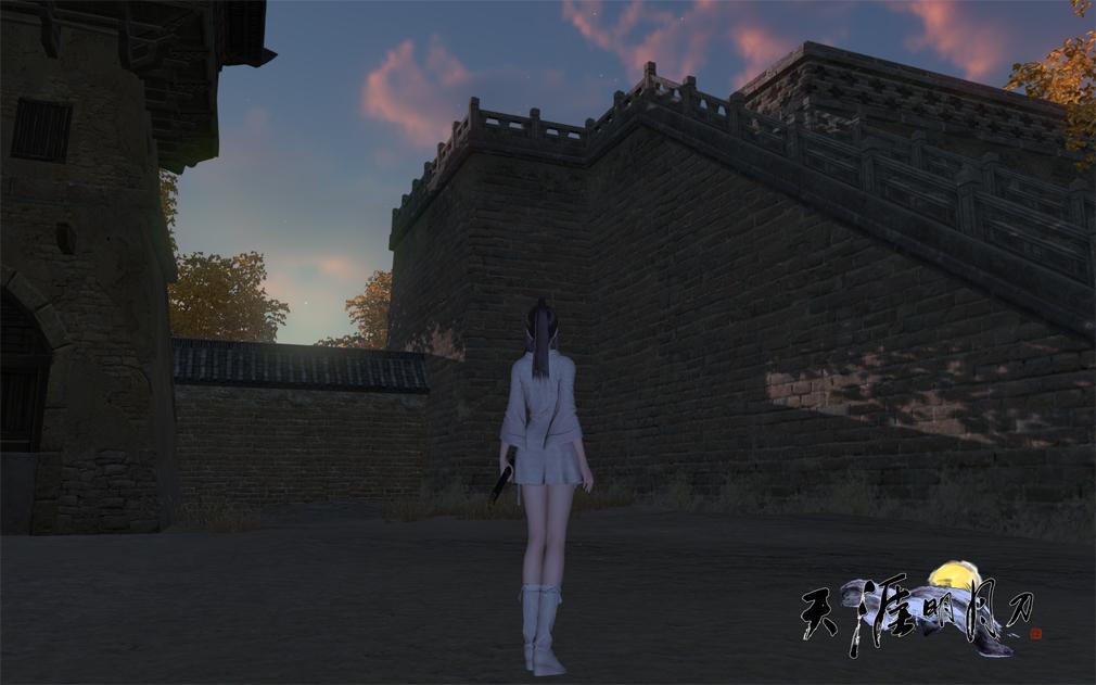 天涯明月刀online 女性キャラ1のバックショットのスクリーンショットスクリーンショット