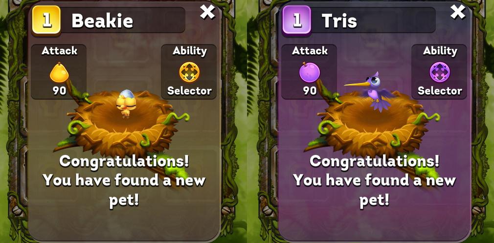 フルーツフォレスト(Bravo Birds) 黄色のBeakieと紫のTris