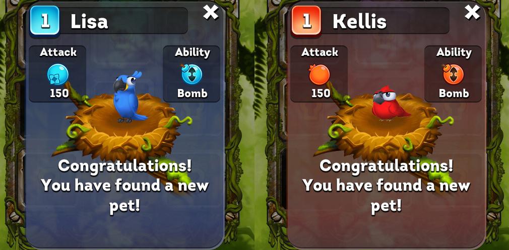 フルーツフォレスト(Bravo Birds) 青のLisaと赤のKellis