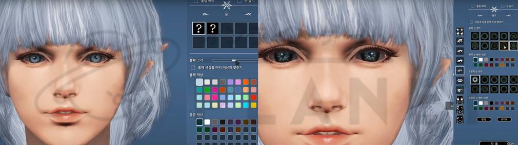 BLESS(ブレス)日本 キャラクターメイキングのメイクアップシステムの黒目の大きさと結晶柄カラコン