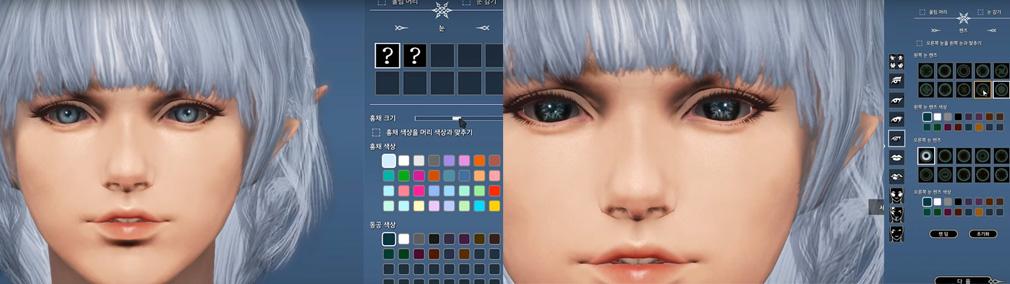 BLESS(ブレス) キャラクターメイキングのメイクアップシステムの黒目の大きさと結晶柄カラコン