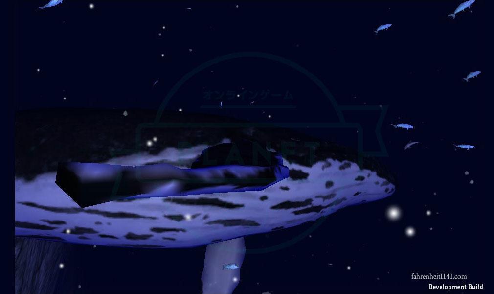 アンダーウォーター(Under Water) ザトウクジラ