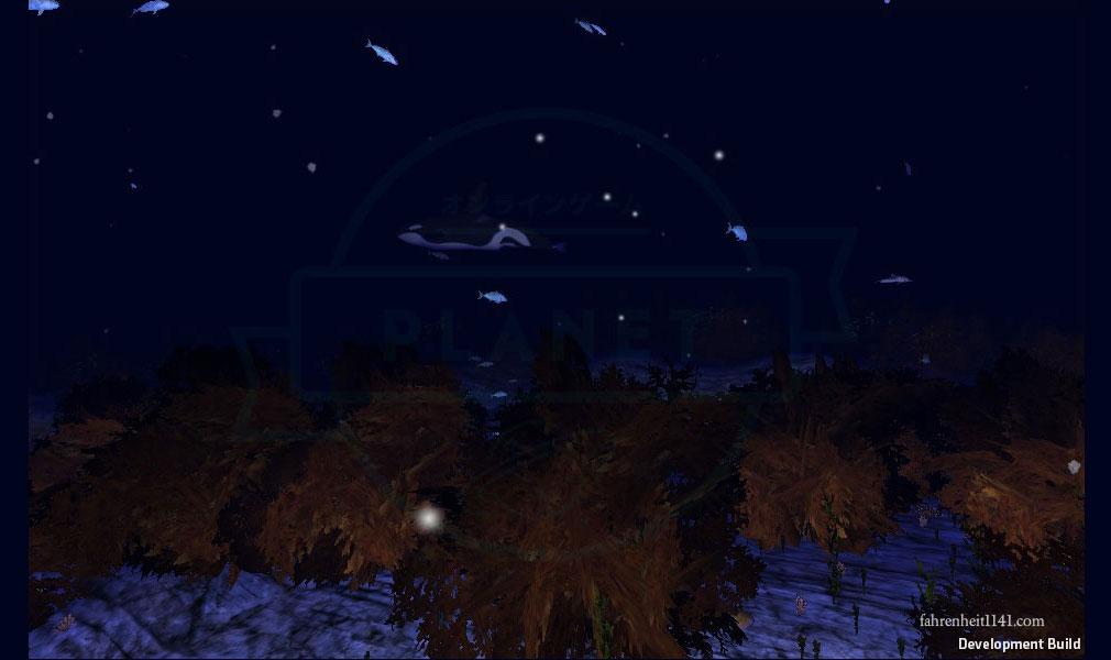 アンダーウォーター(Under Water) 海藻が茂るポイント
