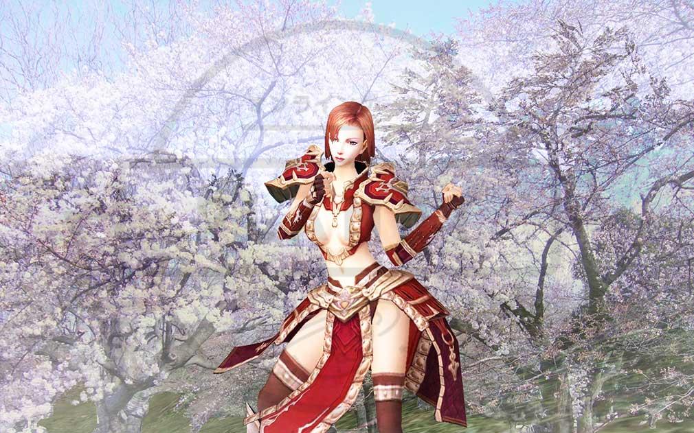 新生ROHAN 桜が咲くフィールド
