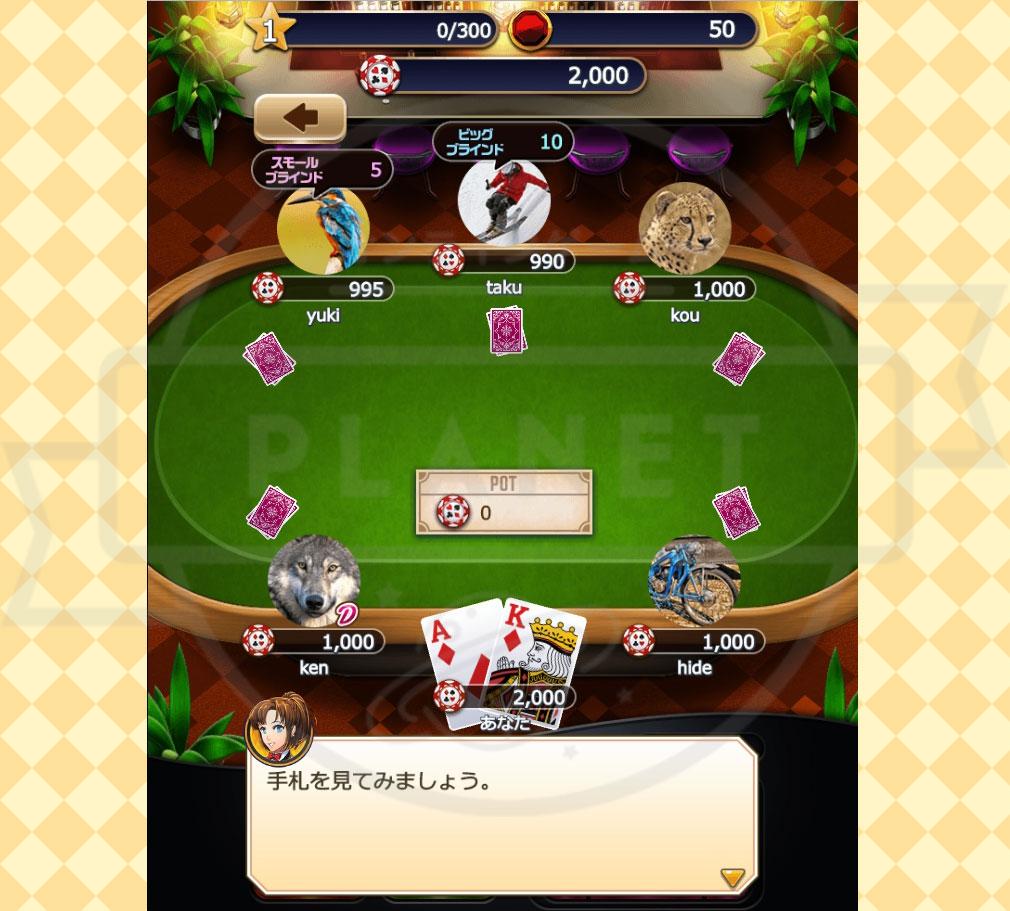 ポーカーパーティ PC 手札