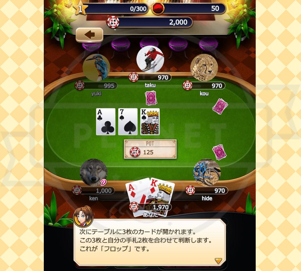 ポーカーパーティ PC フロップ