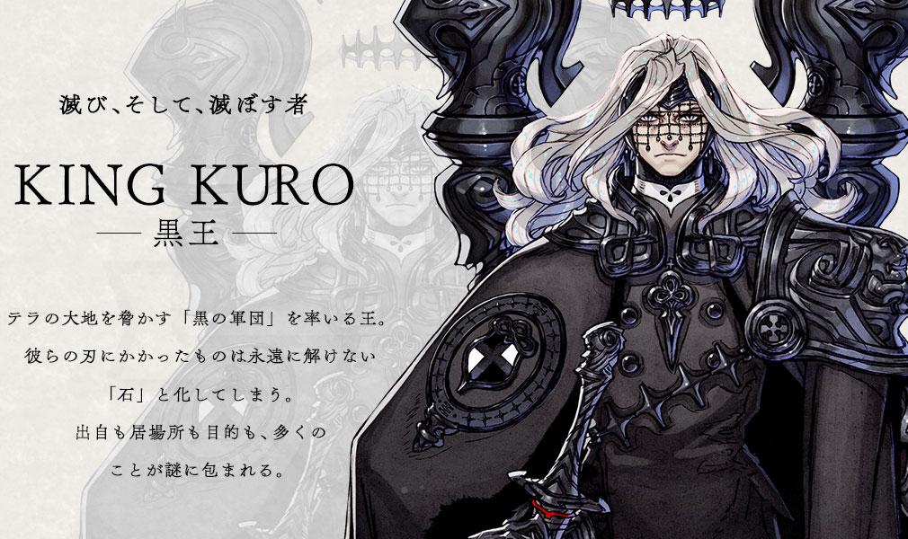 TERRA BATTLE2 (テラバトル2) PC キャラクター【黒王】