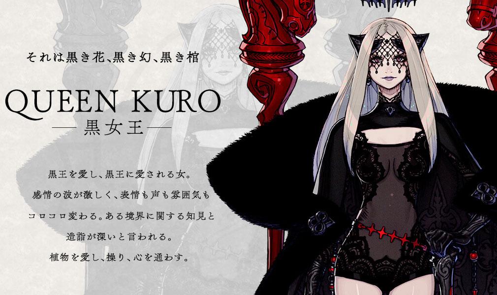 TERRA BATTLE2 (テラバトル2) PC キャラクター【黒女王】