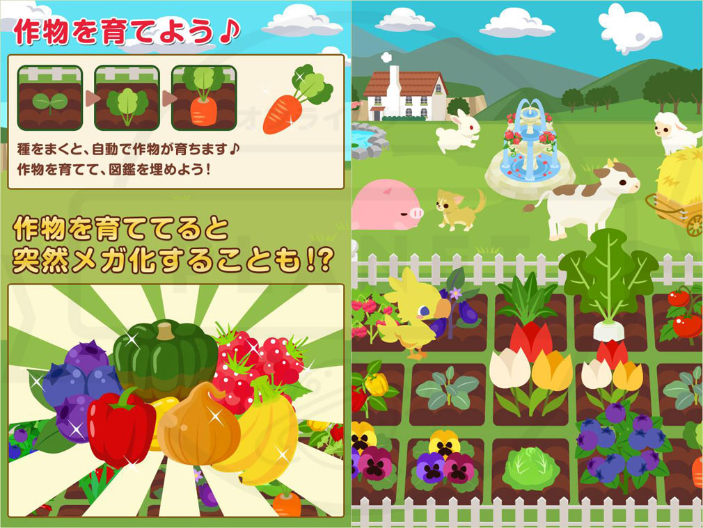 チョコボのチョコッと農園 PC メガ化