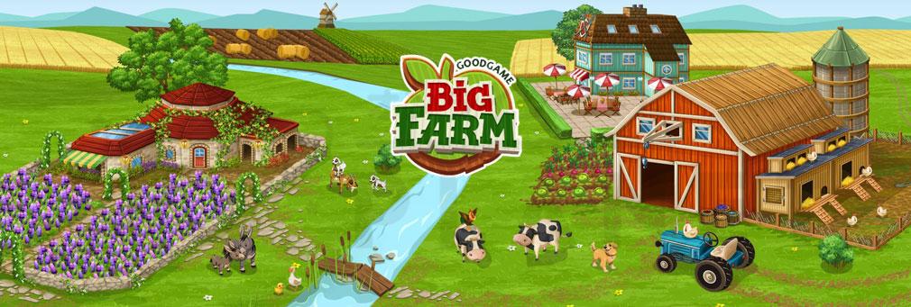 BIG FARM(ビッグファーム) フッターイメージ