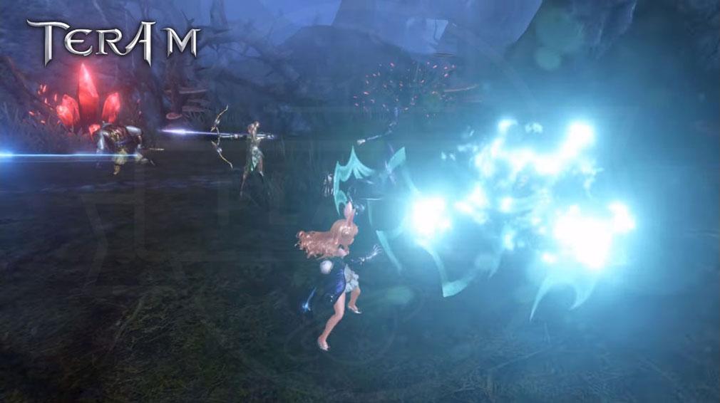 TERA M (テラM) 『エリーン』のパーティープレイ中の攻撃スクリーンショット