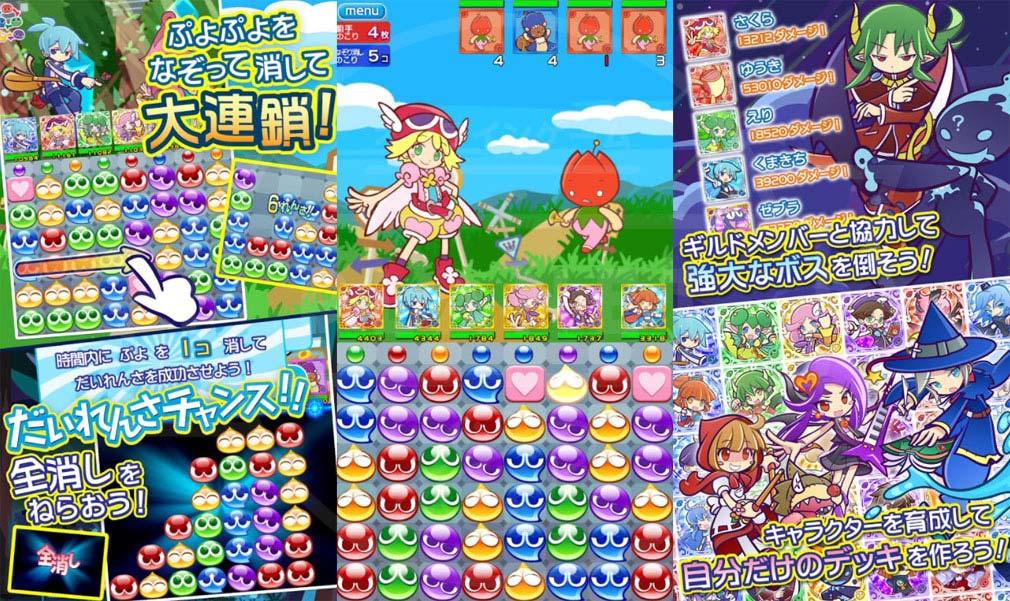 ぷよぷよ!!クエスト(ぷよクエ) アプリ概要紹介イメージ