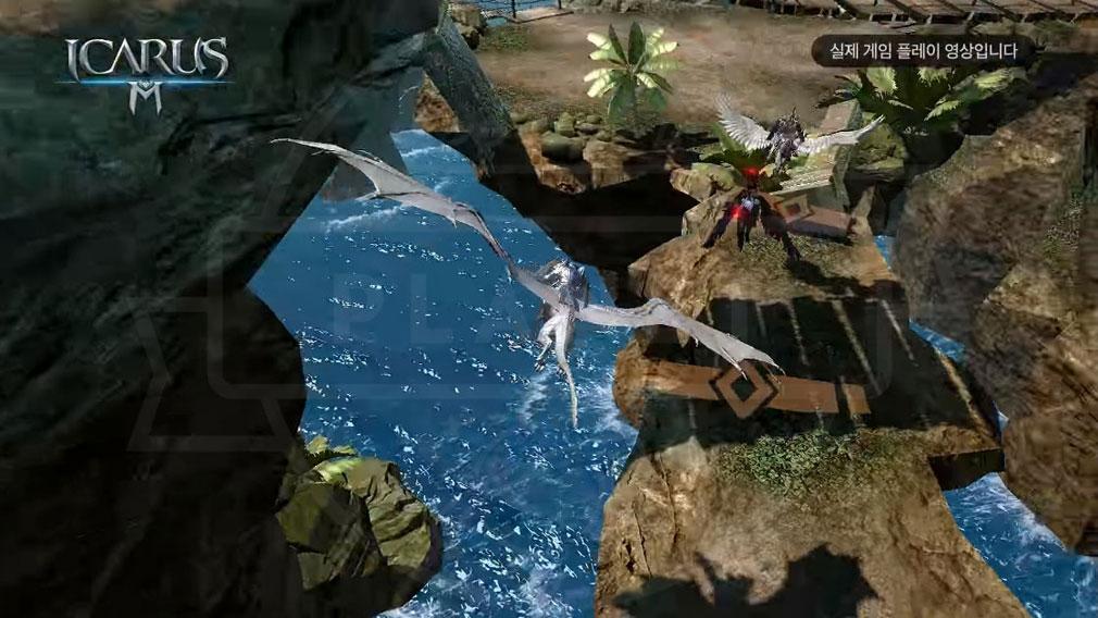 イカロスM (ICARUS MOBILE) フェローと一緒に空を飛行