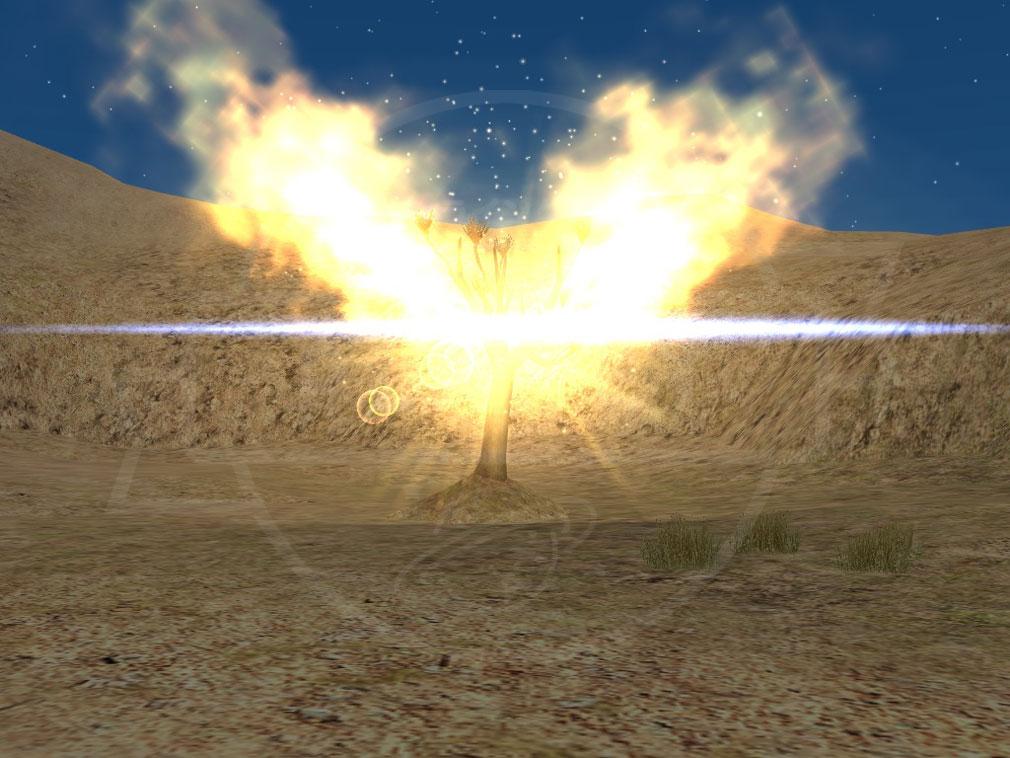 大航海時代 Online Lost Memories (ロスト メモリーズ) 荒野に突然現れた光の『発見物』スクリーンショット
