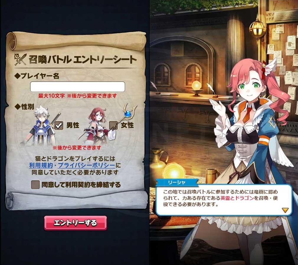 猫とドラゴン(猫ドラ) 召喚士エントリーシート、ゲーム開始スクリーンショット