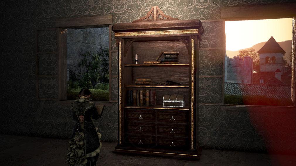 黒い砂漠 家具『カルフェオン生態系手作り本棚』スクリーンショット