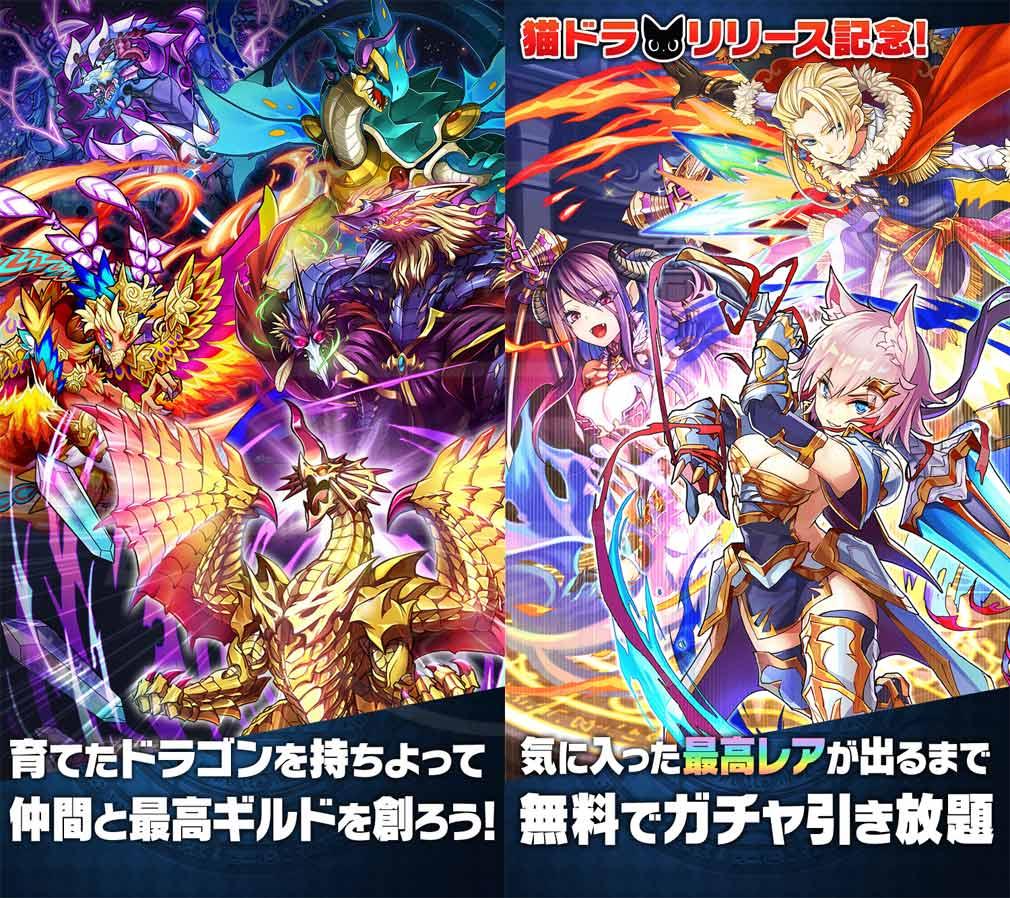 猫とドラゴン(猫ドラ) ゲーム紹介、キャンペーン紹介イメージ