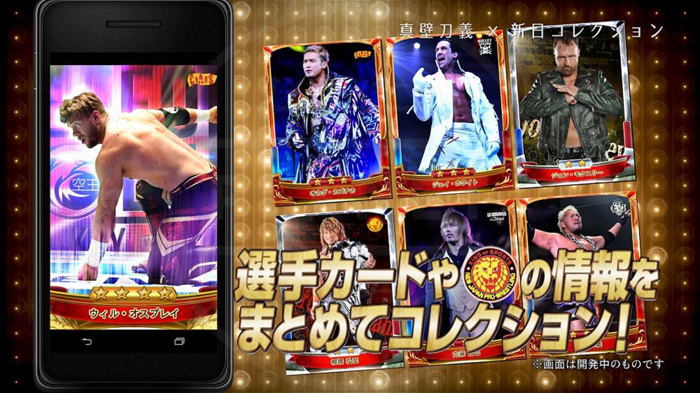 新日コレクション(NJPW Collection) コレクション紹介イメージ