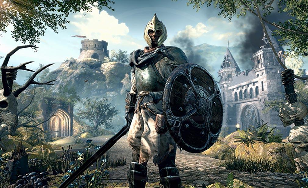 エルダースクロールズ:ブレイズ(The Elder Scrolls BLADES) リアルなグラフィックススクリーンショット