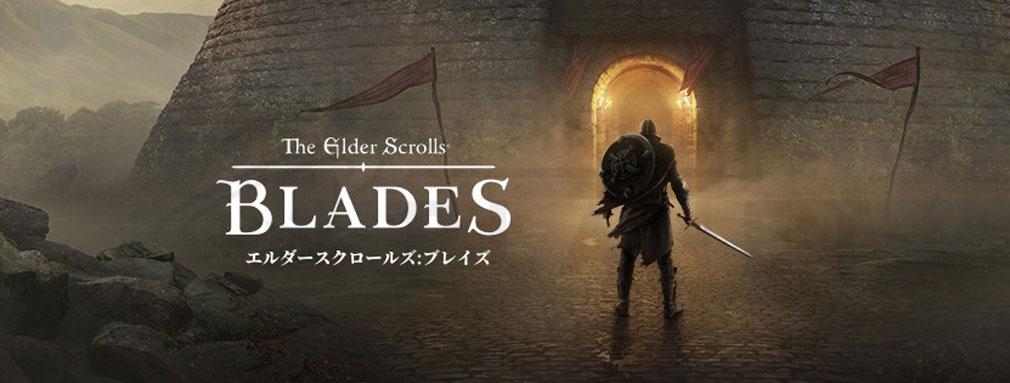 エルダースクロールズ:ブレイズ(The Elder Scrolls BLADES) フッターイメージ