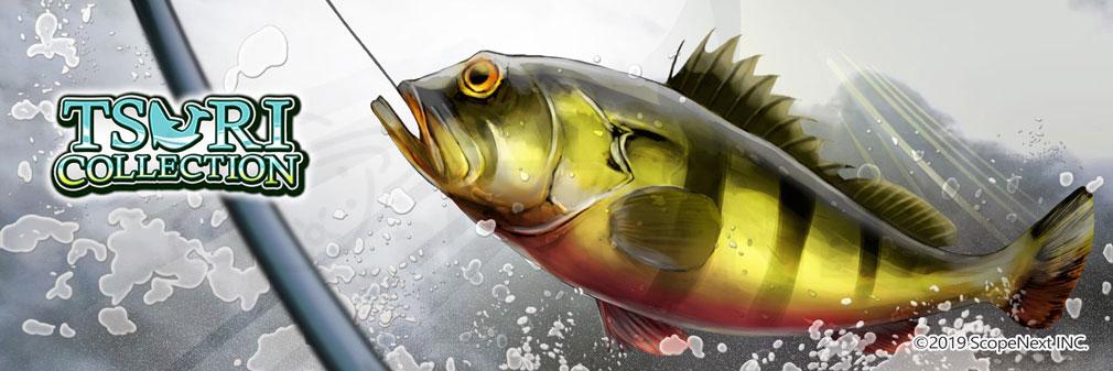 釣りコレクション(ツリコレ) フッターイメージ