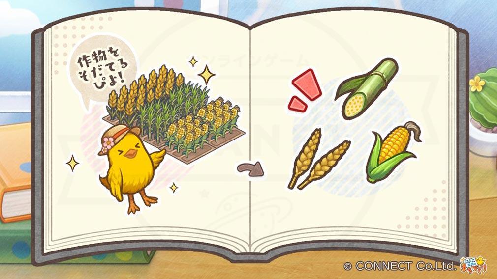 ひよこ社長のまちづくり 作物生産紹介イメージ