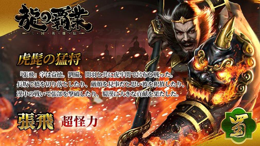 龍の覇業 三国英雄伝 キャラクター『張飛』紹介イメージ
