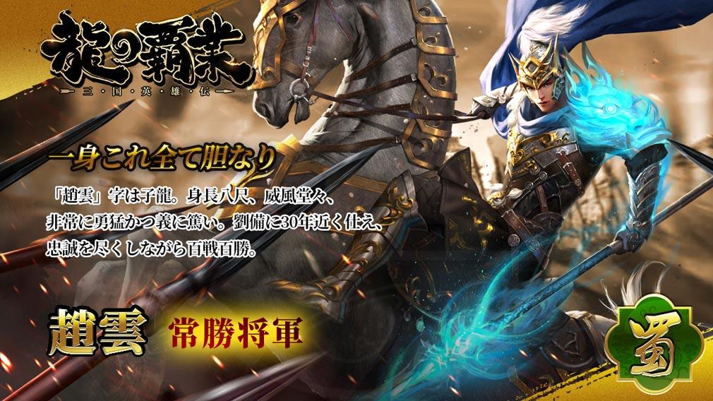龍の覇業 三国英雄伝 キャラクター『趙雲』紹介イメージ