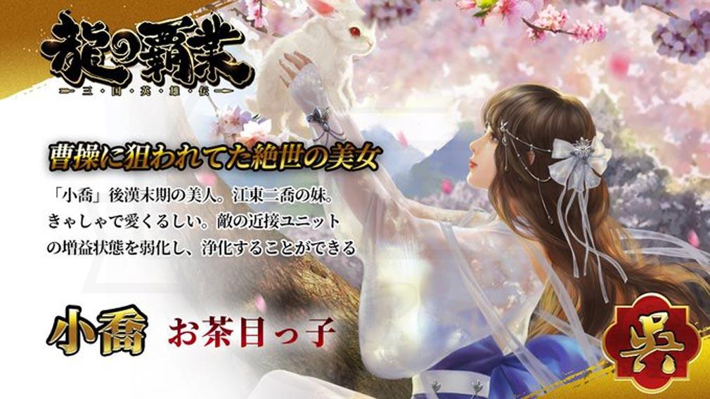 龍の覇業 三国英雄伝 キャラクター『小喬』紹介イメージ