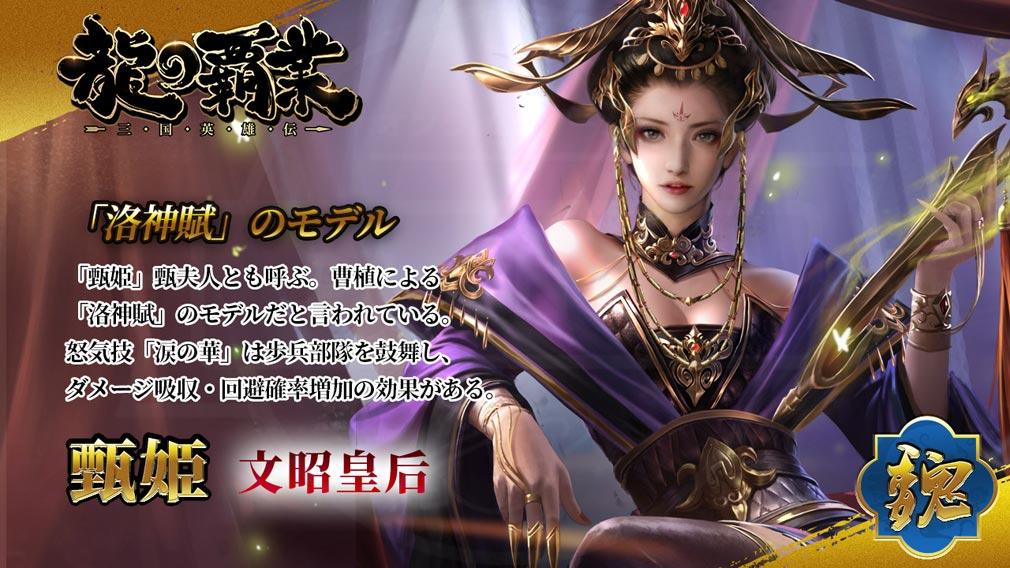 龍の覇業 三国英雄伝 キャラクター『甄姫』紹介イメージ