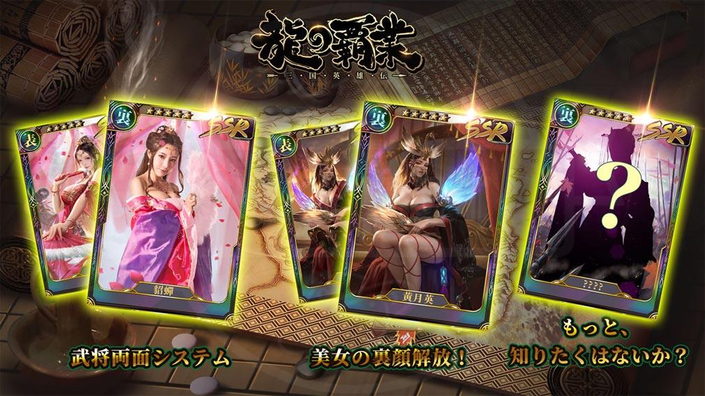 龍の覇業 三国英雄伝 両面システム紹介イメージ