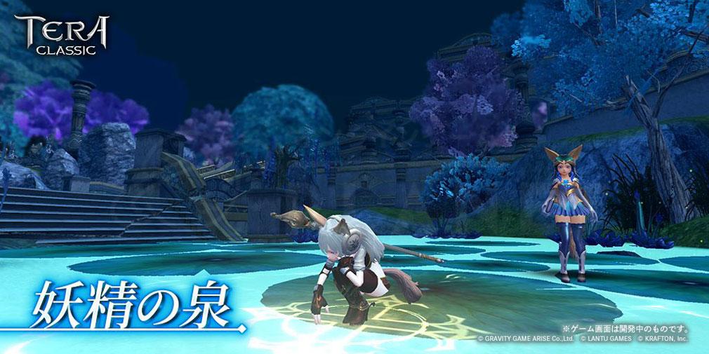 テラクラシック(TERA CLASSIC) ダンジョン『妖精の泉』スクリーンショット