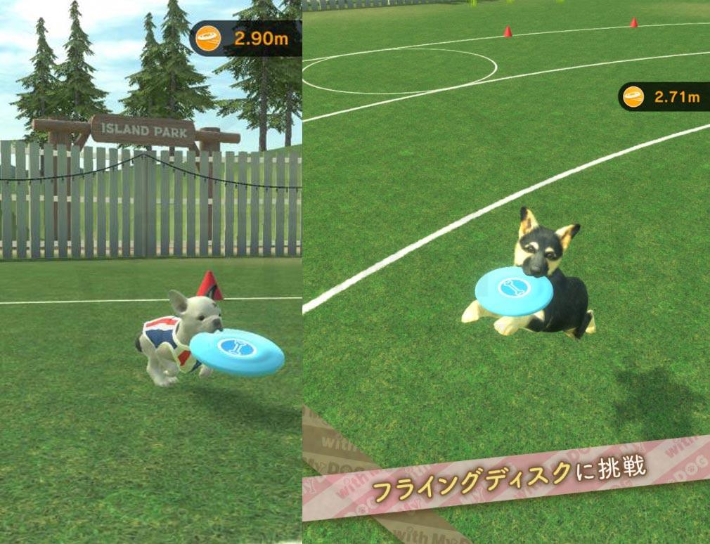 with My DOG 犬とくらそう(犬くら) フライングディスク紹介イメージ