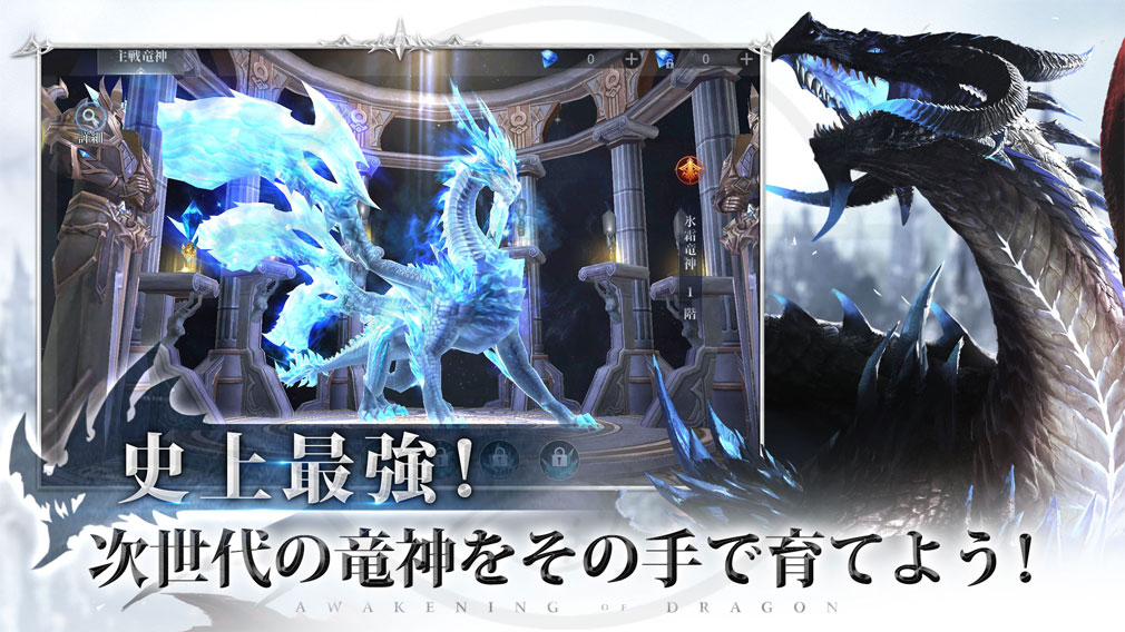 AOD 龍神無双 『龍神システム』紹介イメージ