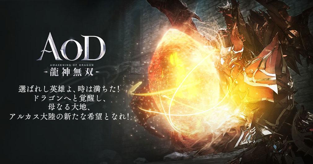 AOD 龍神無双 『竜晶』紹介イメージ