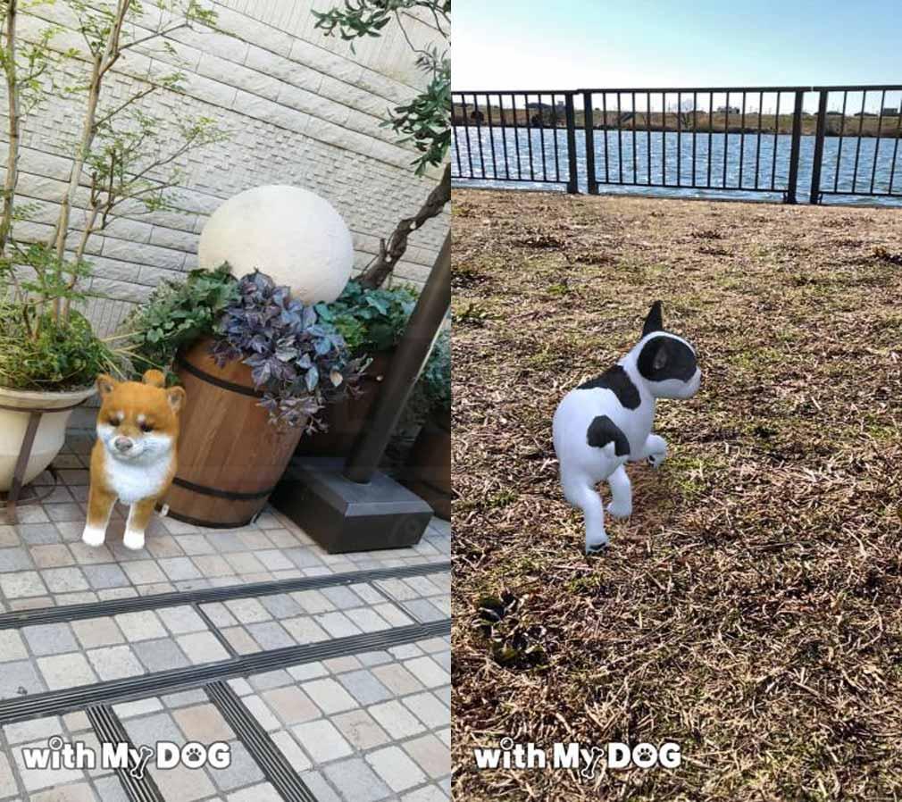 with My DOG 犬とくらそう(犬くら) AR静止画撮影紹介イメージ
