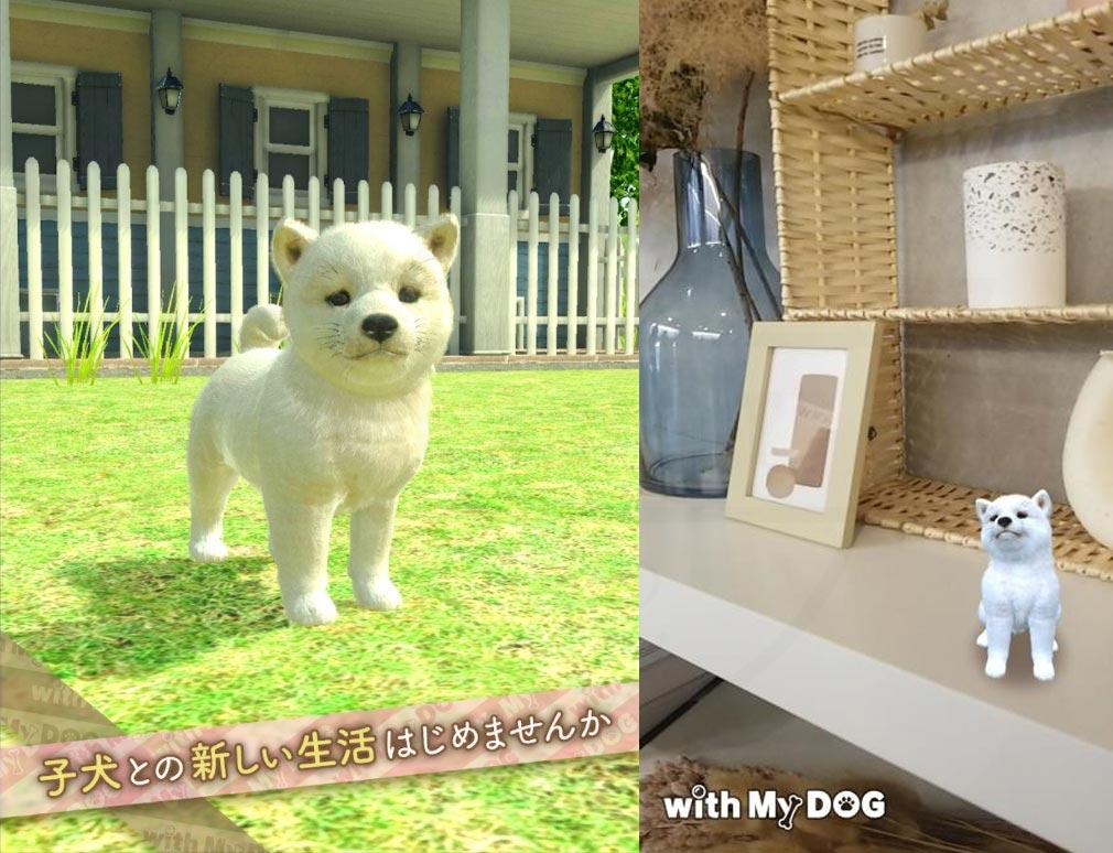 with My DOG 犬とくらそう(犬くら) 子犬たちと過ごしている紹介イメージ