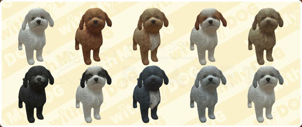 with My DOG 犬とくらそう(犬くら) トイプードルのバリエーション紹介イメージ