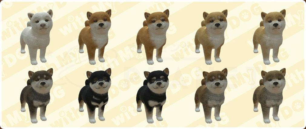 with My DOG 犬とくらそう(犬くら) 柴犬のバリエーション紹介イメージ