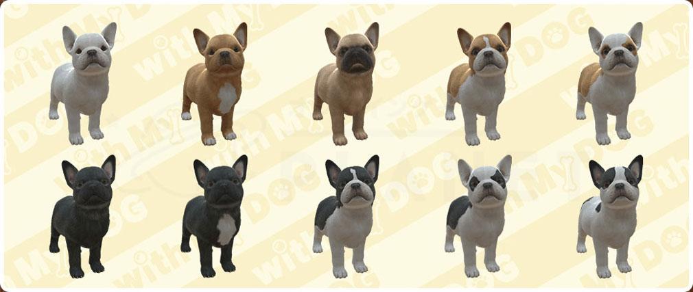 with My DOG 犬とくらそう(犬くら) フレンチ・ブルドッグのバリエーション紹介イメージ