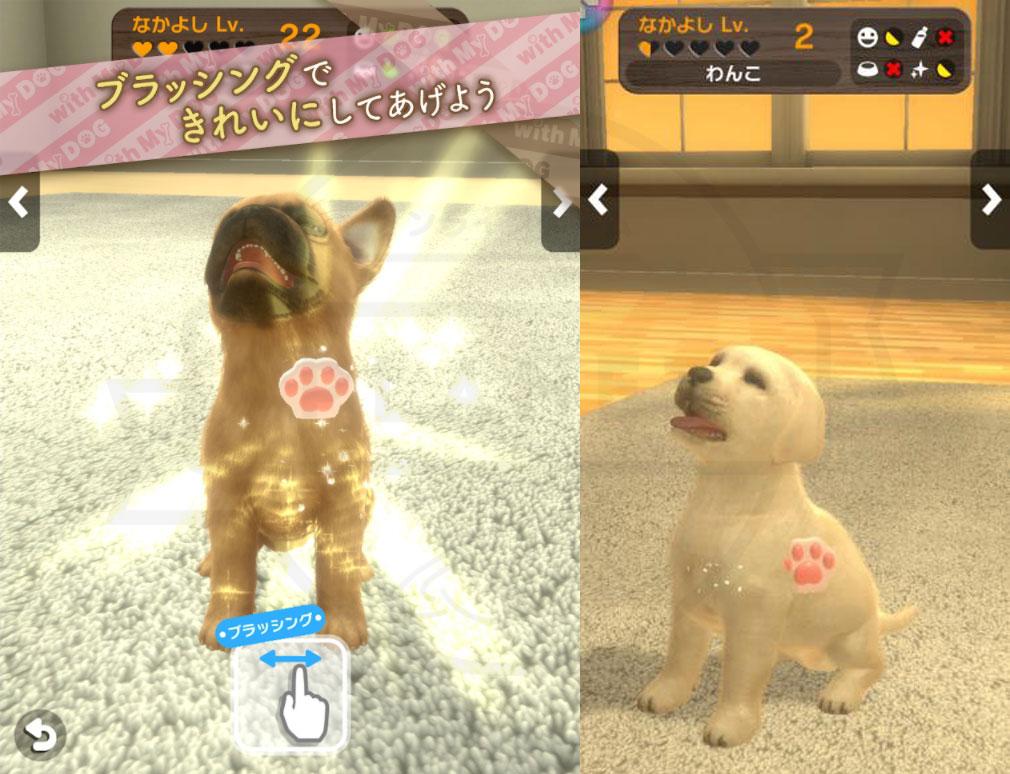 with My DOG 犬とくらそう(犬くら) ブラッシング紹介イメージ