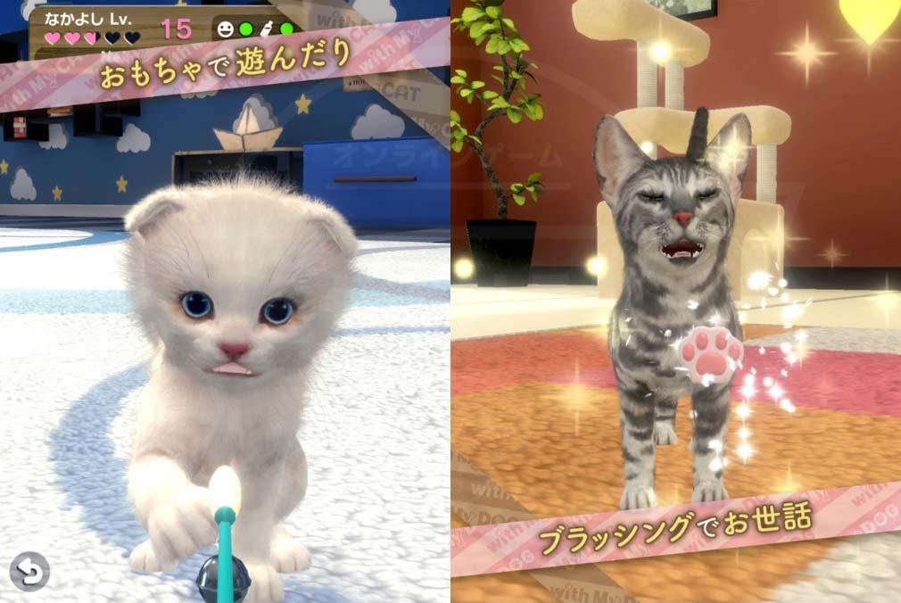 with My CAT 猫とくらそう (猫くら) おもちゃで遊ぶ、ブラッシングで世話する紹介イメージ